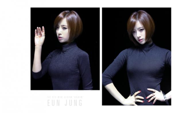 t-ara again pictures (23)