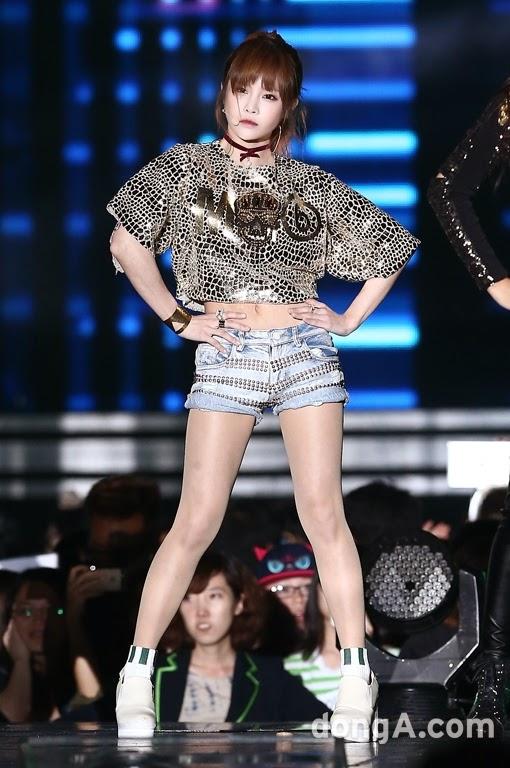 t-ara 2014 hallyu dream concert (20)