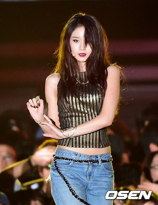 t-ara 2014 hallyu dream concert (4)