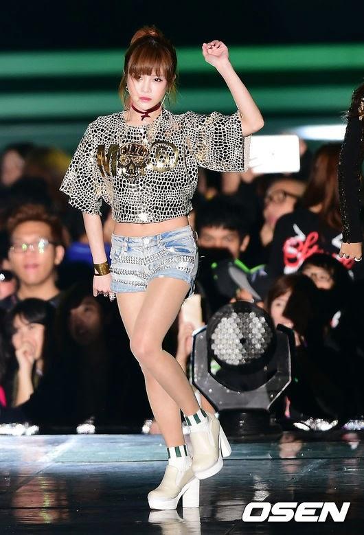 t-ara 2014 hallyu dream concert (5)