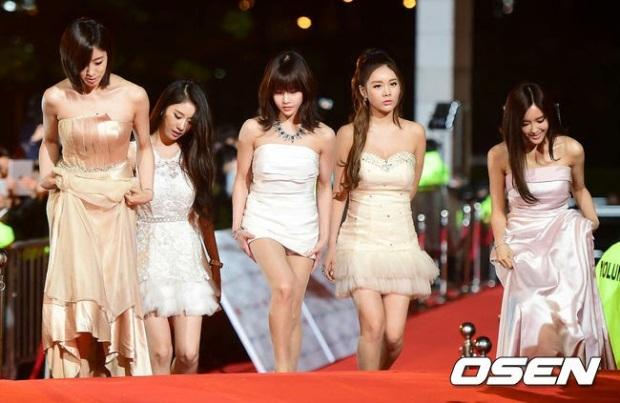 t-ara 2014 apan star awards red carpet (1)