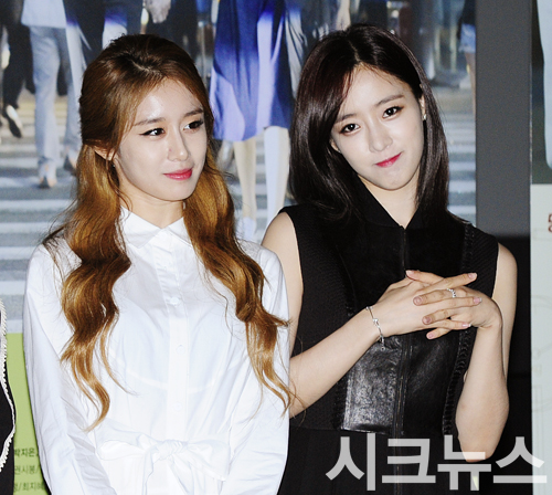 t-ara sweet temptation press conference (18)